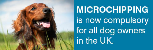 Microchip banner 9886 - revised