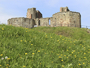 Image of Stafford Castle