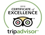 Certificate_of_Excellence_Trip_Advisor